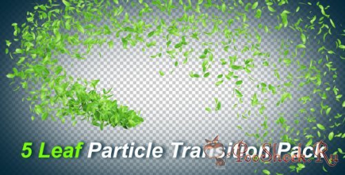 Videohive - 5 Leaf Particle Transition Pack
