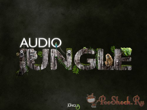 AudioJungle Pack