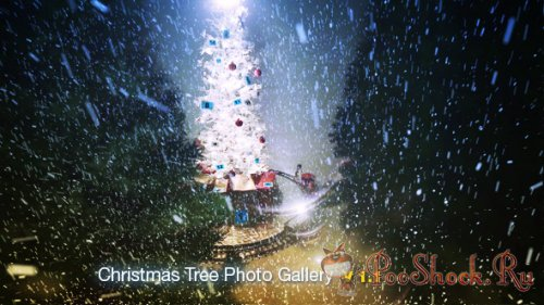 Videohive - Christmas Tree Photo Gallery (AE Project)