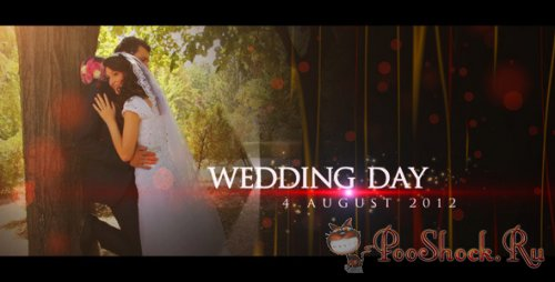 VideoHive - Wedding Teaser (.aep)