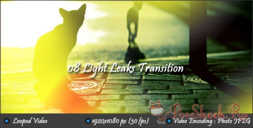VideoHive - Light Leaks Transition