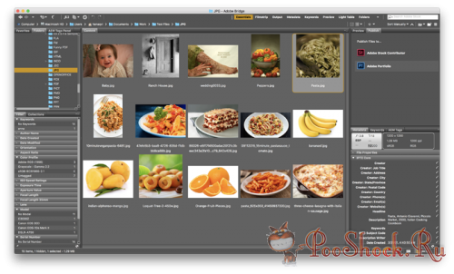 Adobe Bridge CC 2018 (8.0.1.282) ML-RUS