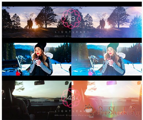 VideoHive - Light Leaks Pack (MOV)